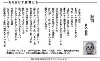 証言 95 95○○.jpg