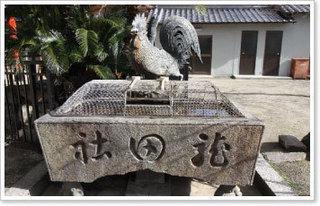 龍田神社の鶏.jpg
